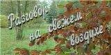 Разговор на свежем воздухе (1-й канал Останкино, 19.10.1992) Эльд...